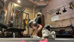 Gym stream!